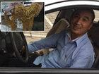 Таксист совершил поступок, достойный уважения - ФОТО: Фоторепортажи