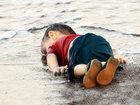 Душераздирающее фото, потрясшее миллионы человек во всем мире - ФОТО: Фоторепортажи