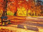 10 замечательных причин полюбить осень - ФОТО: Фоторепортажи