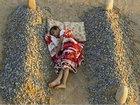 23 вирусных фото, которые оказались обманом - ФОТО: Фоторепортажи