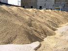 В Азербайджане продлен срок принятия пшеницы для Государственного зернового фонда: Экономика