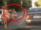 Ужасное зрелище: девушка торопилась перейти дорогу - ВИДЕО: Видеоновости