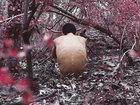 Поразительные работы 16-летнего фотографа - ФОТОСЕССИЯ: Фоторепортажи