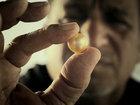 Ныряльщики за жемчугом: как добывают этот ювелирный материал - ФОТОСЕССИЯ: Фоторепортажи
