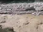 Полицейские не оставили собаку в беде - ВИДЕО: Видеоновости