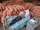 Заснувшие в самых неожиданных местах - ФОТОСЕССИЯ: Фоторепортажи
