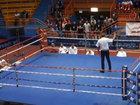 Мерзкий поступок боксера на ринге - ВИДЕО: Видеоновости