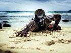 Топ 15 страшнейших ночных кошмаров человека - ФОТО: Фоторепортажи