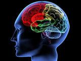 10 опасных привычек, медленно убивающих твой мозг: Это интересно
