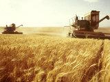 Как Израиль может поддержать безопасность Азербайджана: Экономика