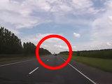 В этом ДТП никто из водителей не выжил - ВИДЕО: Это интересно