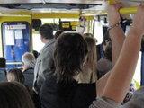 Нововведения в автобусах: есть ли повод для беспокойства? - ОПРОС: Общество