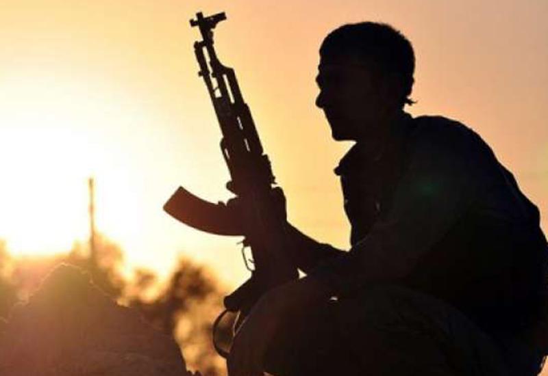 """Власти Ирака: """"ИГ"""" зарабатывает на продажах рыбы и машин"""