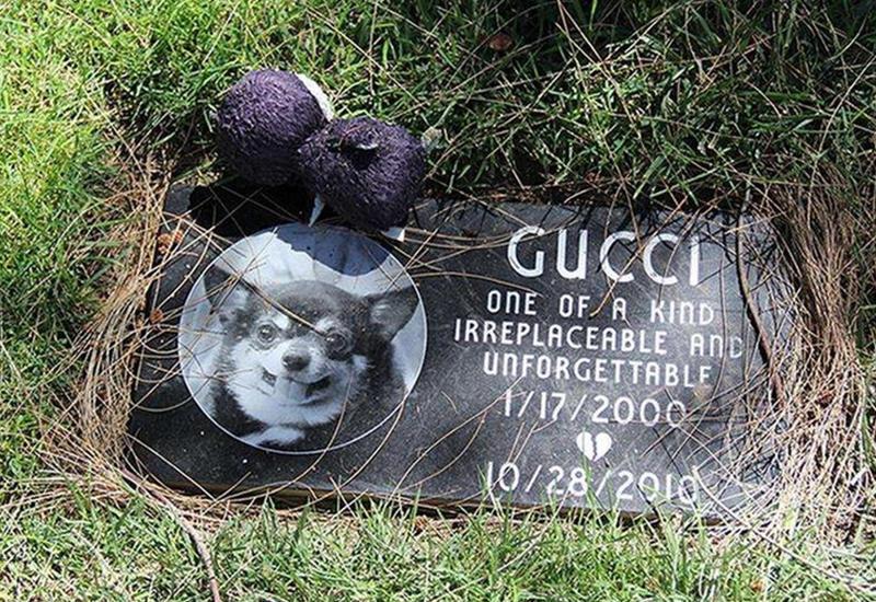 """Кладбище домашних животных в Лос-Анджелесе <span class=""""color_red"""">- ФОТОСЕССИЯ</span>"""
