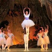 """Любовь и безумие на сцене Театра оперы и балета <span class=""""color_red"""">- РЕПОРТАЖ - ФОТО</span>"""