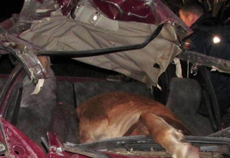 """At """"07""""-yə girdi: 2 nəfəri yaraladı, özü isə öldü"""