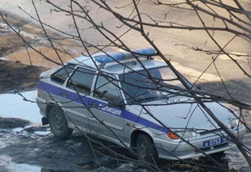 В Москве лошадь врезалась в троллейбус