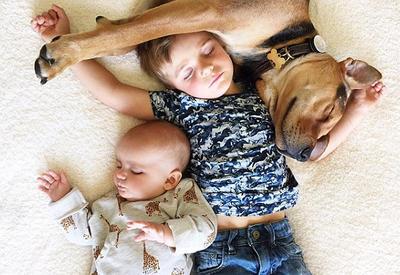 """Самый умилительный блог в мире: трое в кровати, считая собаку <span class=""""color_red"""">- ФОТО</span>"""
