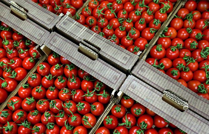 ВОренбуржье уничтожили 19,5 тонн турецких помидоров