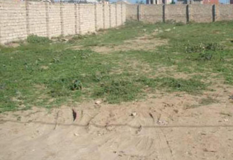 Минюст аннулировал продажу и аренду земли на 1400 га