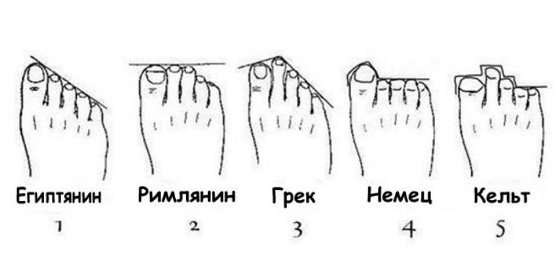 Как сделать ноги длиннее упражнения фото 788