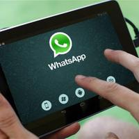 "В WhatsApp появилась новая функция <span class=""color_red"">- ВИДЕО</span>"