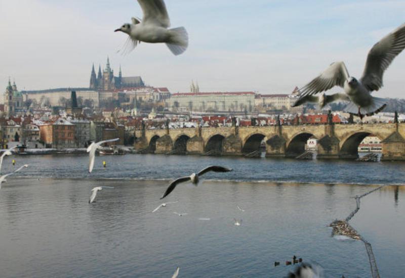 В Праге пройдут митинги противников и сторонников миграции