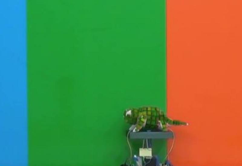 """Американские и китайские инженеры создали робота-хамелеона <span class=""""color_red"""">- ВИДЕО</span>"""