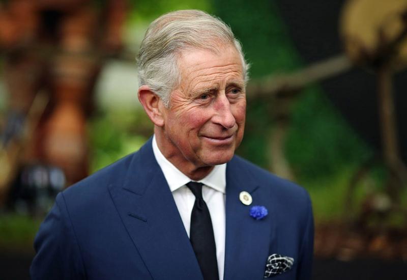 Принц Чарльз заработал $3 млн. на своих картинах