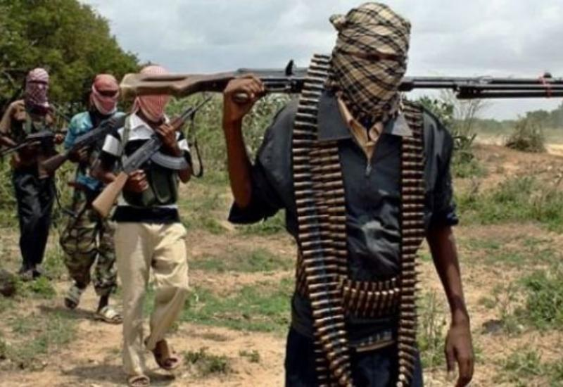 Смертница «Боко Харам» выкинула бомбу и сдалась властям