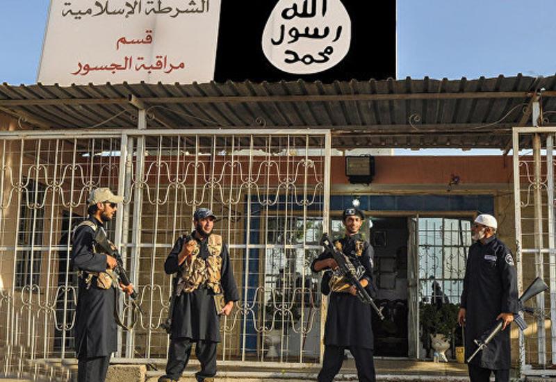 """На востоке Сирии нашли массовое захоронение жертв боевиков """"ИГ"""""""