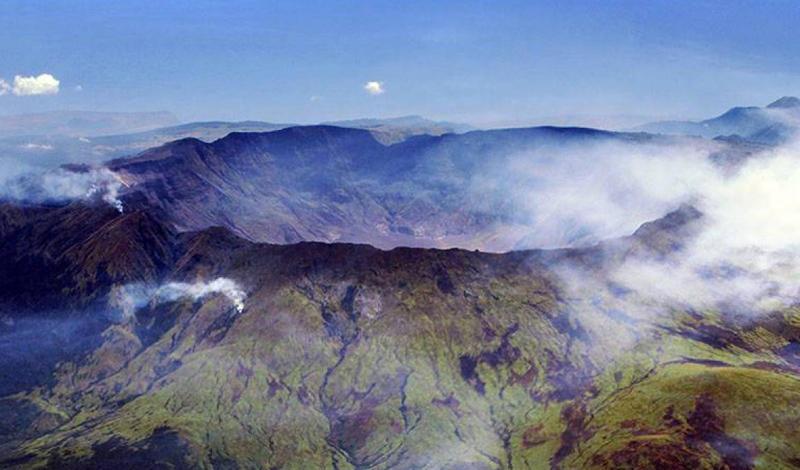 Год без летаВ апреле 1815 года вулкан Тамбора, совершенно неожиданно для сейсмологов, извергся. В результате появилось огромное облако пыли и смога, закрывшее солнце. В момент извержения погибла