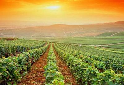"""Азербайджанские фермеры вооружаются солнечными батареями <span class=""""color_red"""">- ПОДРОБНОСТИ</span>"""