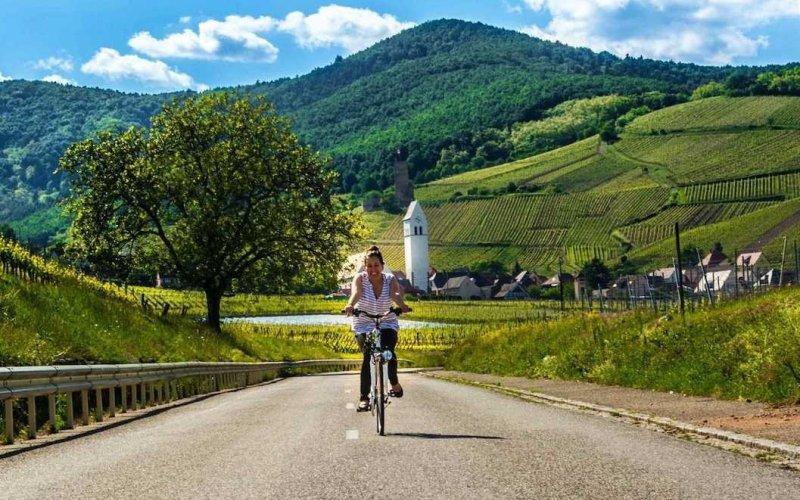 Даника едет через виноградники Эльзаса, Франция.