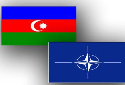 НАТО об укреплении сотрудничества с Азербайджаном