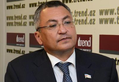 Ровшан Рзаев: Мнения армянского депутата далеки от человеческого мышления
