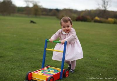 Британский королевский дом опубликовал новые фото принцессы Шарлотты