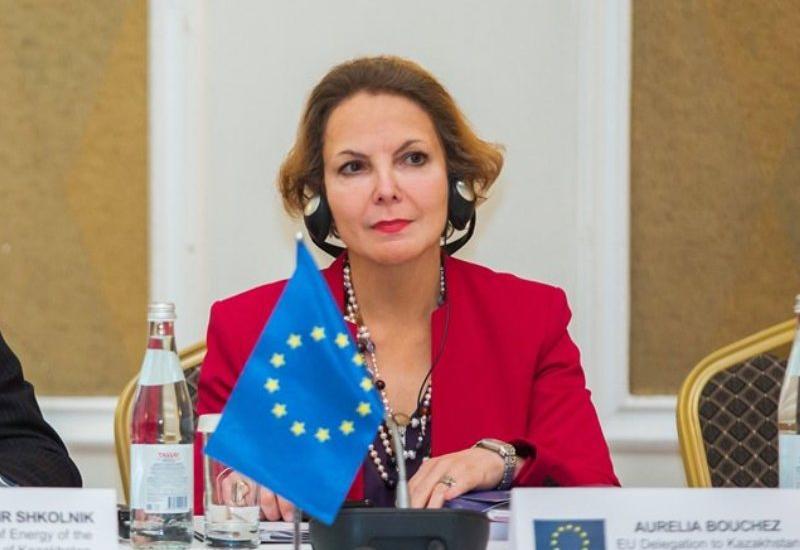 Посол Франции: Азербайджан превратится в региональный университетский центр