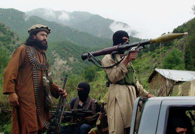 Иран сотрудничает с талибами для создания буферной зоны с Афганистаном