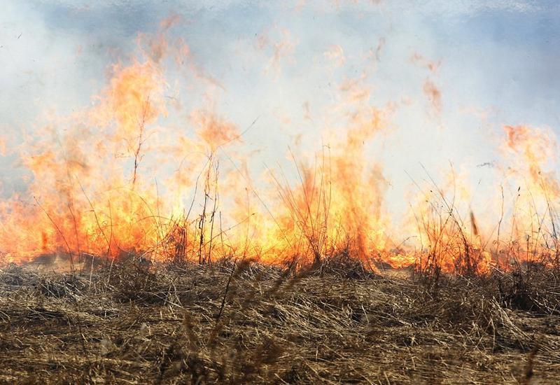 Армения в огне