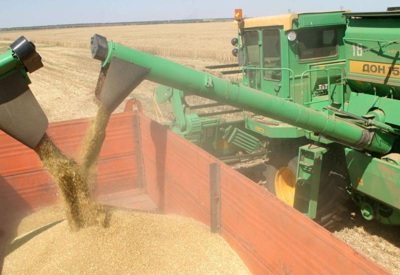 Азербайджан в пятерке крупнейших покупателей российского зерна