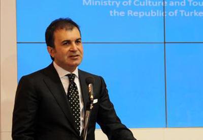 Турецкий министр назвал причину отставки посла ЕС