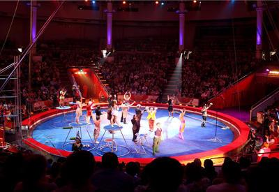 """Падение эквилибриста в цирке попало на камеры <span class=""""color_red"""">- ВИДЕО</span>"""