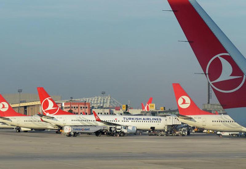 В аэропорту Стамбула щенок задержал несколько рейсов