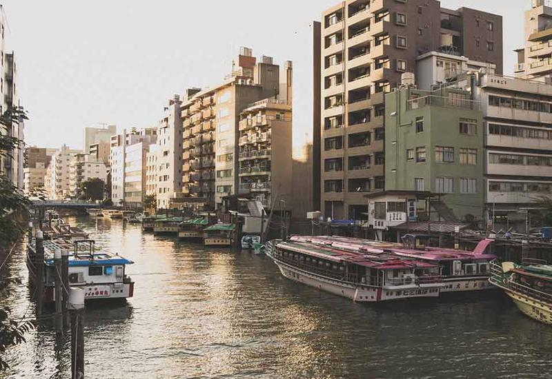 В канале в Токио найден чемодан с мертвой женщиной