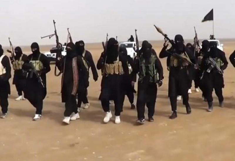 """ЦРУ: """"ИГ"""" отправил в Турцию 30 боевиков"""