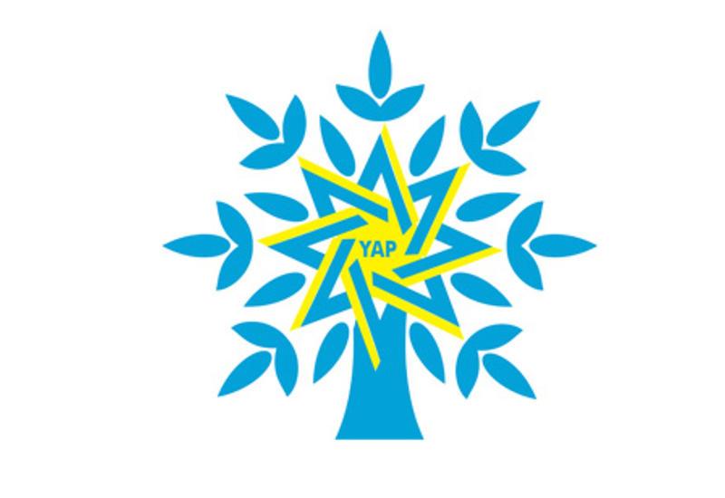 Правящая партия об изменениях в Конституцию Азербайджана
