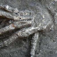 Армяне снова грабят оккупированный Агдам