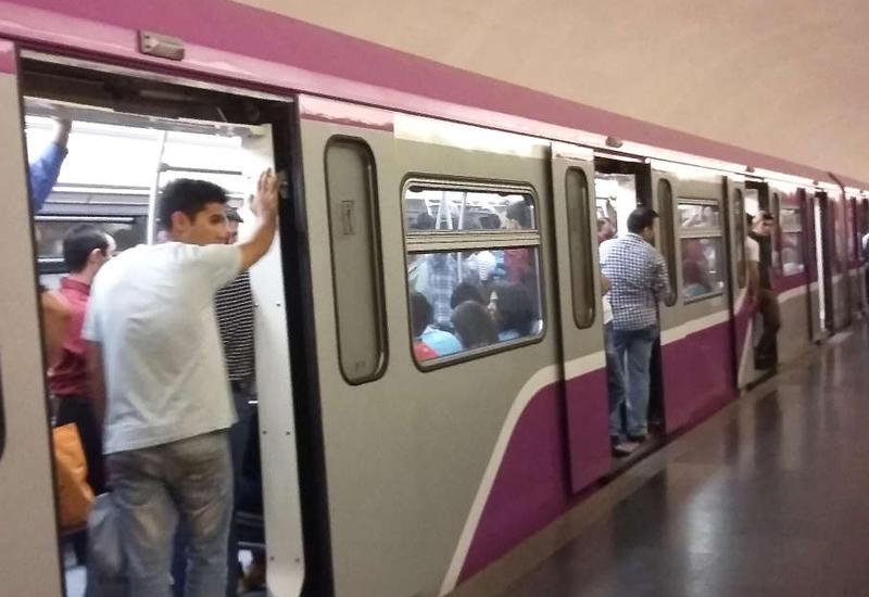 Metro pulsuz kurs keçəcək