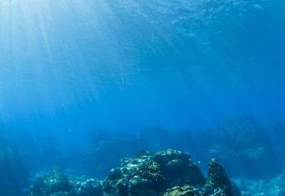 """Ученые обнаружили таинственную светящуюся сферу на дне океана <span class=""""color_red"""">- ВИДЕО</span>"""